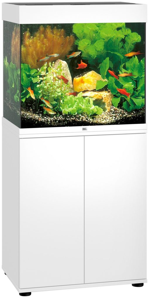 Akwarium 120 l z wyposażeniem, oświetleniem i białą szafką